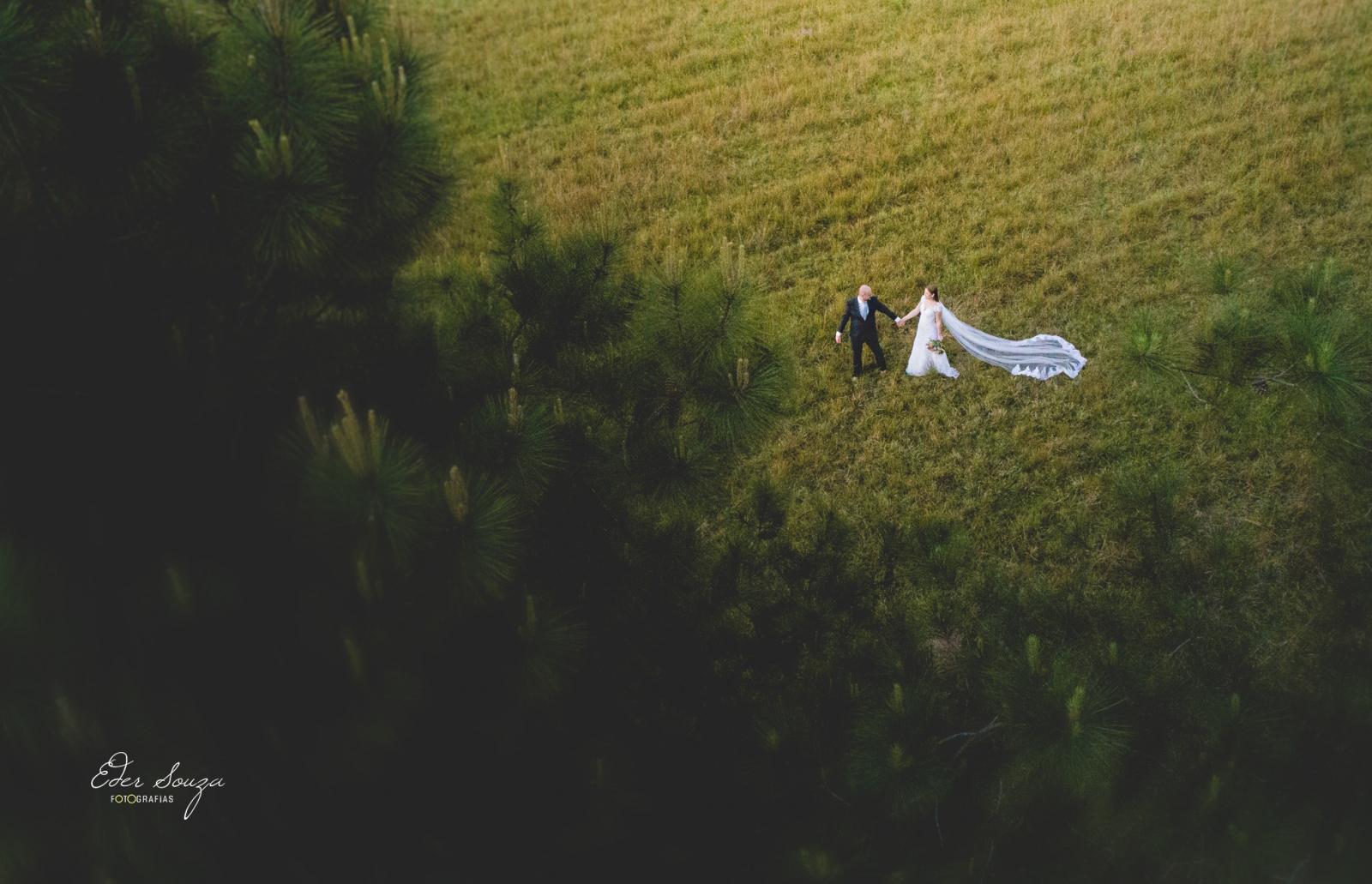 Wedding Brasil